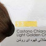 طلایی قهوهای روشن 5.3